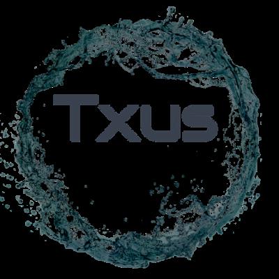 txusdirector
